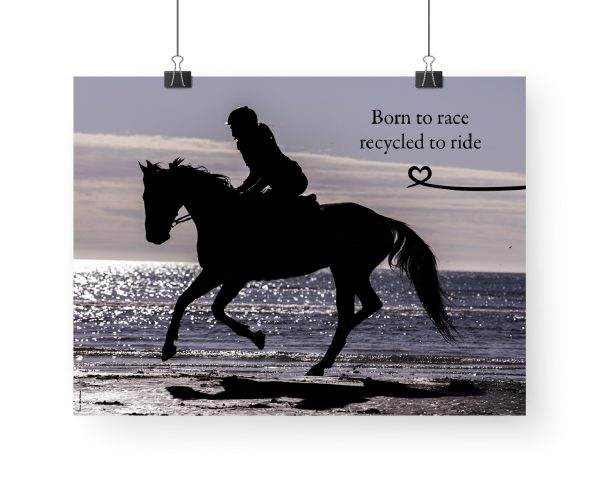 Poster: Born to race recycled to ride